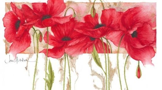 ilustraciones-de-flores-jan-harbon-5.jpg
