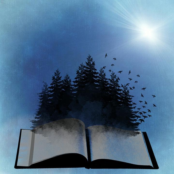 book-718633_960_720